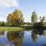 Осенний уголок Тригорского