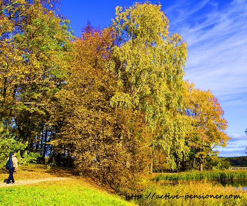 Осень. Михайловское.