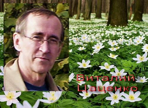 Виталий Цаценко (автор рассказа)