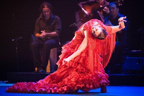 Незабываемое представление фламенко.